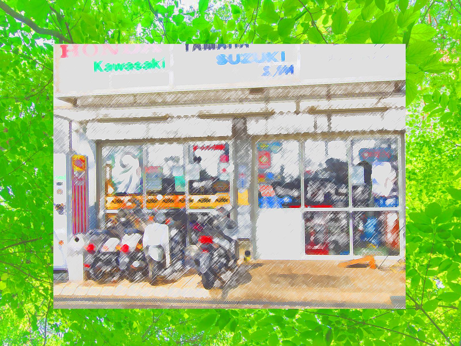 SUPER MOTO LINK (スーパーモトリンク)